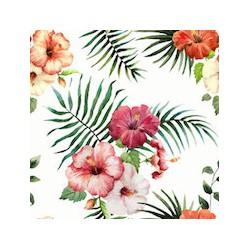 Hibiscus velours x 50cm