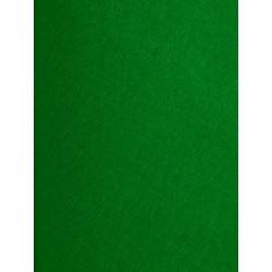 Feutrine vert billard x 50cm