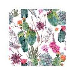 Cactus GM velours x 50cm