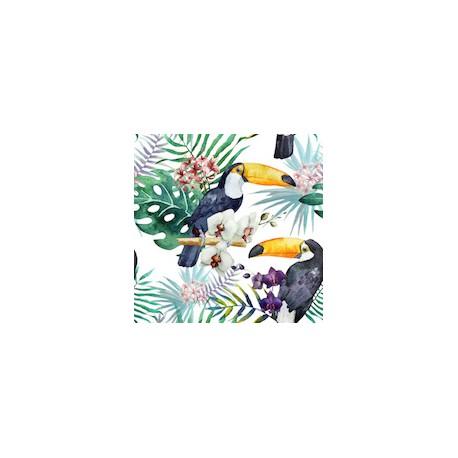 Jardin exotique x50cm