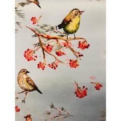 Velours oiseaux x 50cm